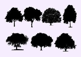 Vecteurs de silhouette de chêne vecteur