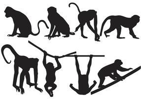 Vecteurs de silhouette de singe vecteur