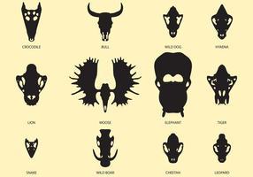 Crâne animal vecteur