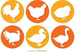 Icônes de vecteur de poulet