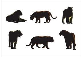 Vecteurs Silhouette Tigre