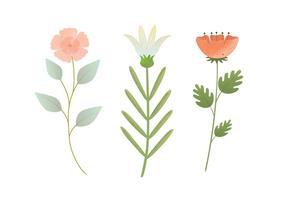Illustration de fleur de vecteur