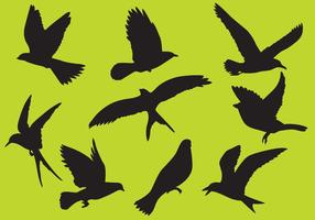 Vecteurs d'oiseaux vecteur