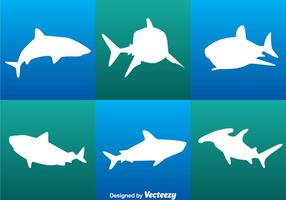 Vecteurs blancs de requin vecteur