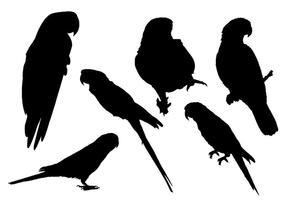 Vecteur de silhouette de perroquet gratuit