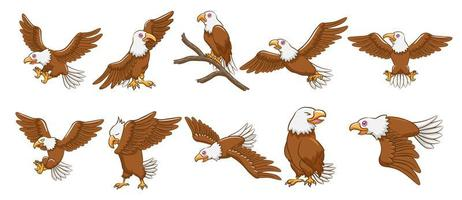 jeu de dessin animé aigle vecteur