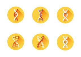Ensemble d'icônes d'ADN vecteur