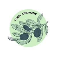conception d'huile d'olive biologique dessinée à la main