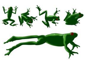 Vecteurs de grenouilles