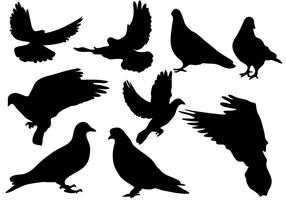 Vector Pigeon Silhouette gratuit