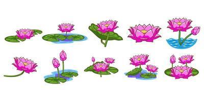 ensemble de fleurs de lotus vecteur