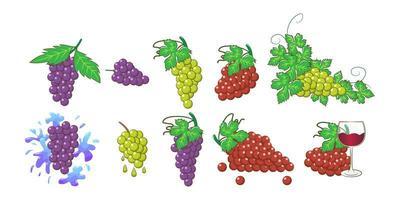 ensemble de grappe de raisin vecteur
