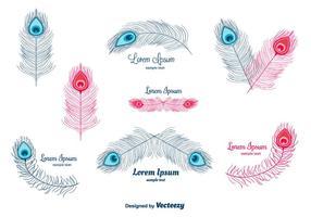 Vecteur de plumes de paon