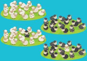 Vecteurs de troupeaux de moutons vecteur