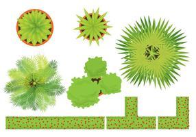 Vecteurs végétaux vecteur
