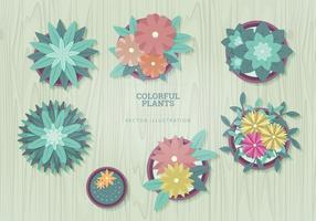 Illustrations vectorielles végétales vecteur