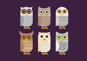 Vignoble Barn Owl vecteur