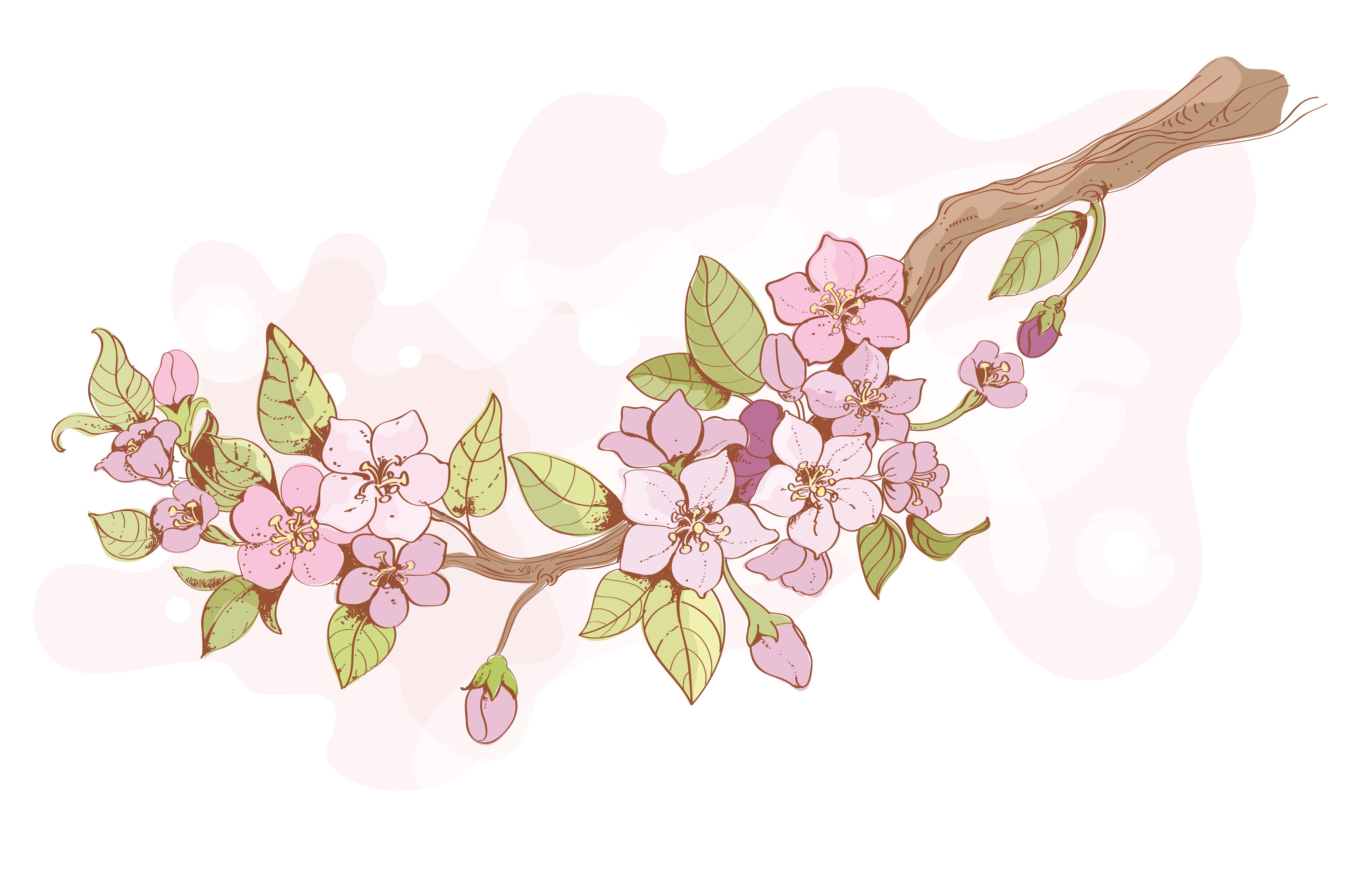 Branche De Cerisier Sakura Telecharger Vectoriel Gratuit Clipart Graphique Vecteur Dessins Et Pictogramme Gratuit