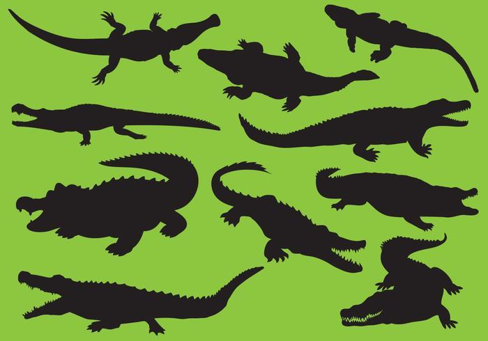 Silhuetas de Gator vetor