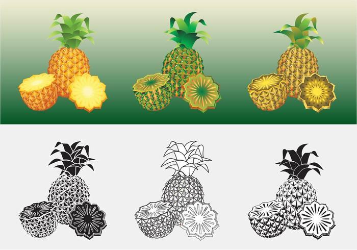 Vetor ananas