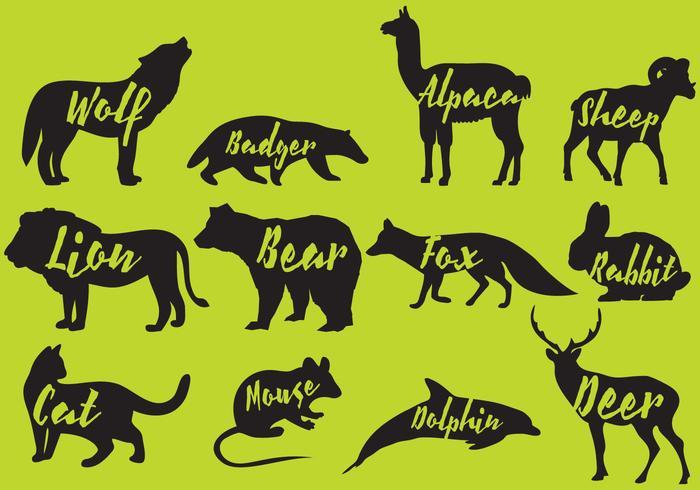 Silhuetas de mamíferos com nomes vetor