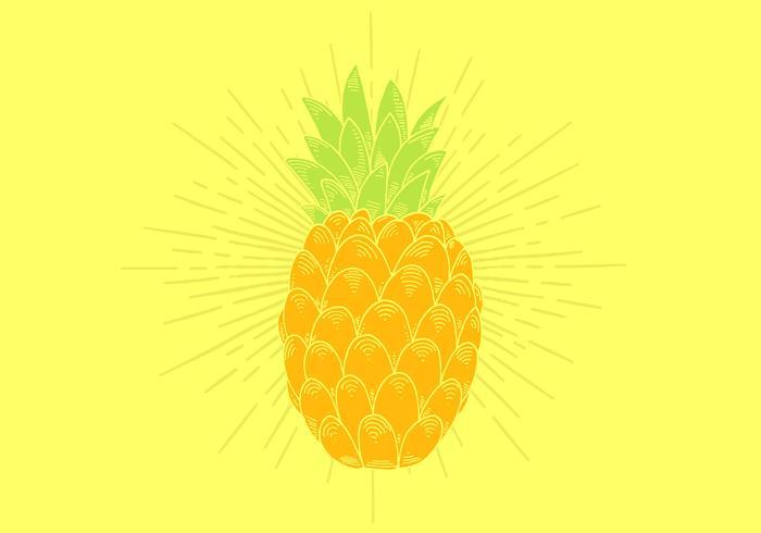 Vetor de abacaxi
