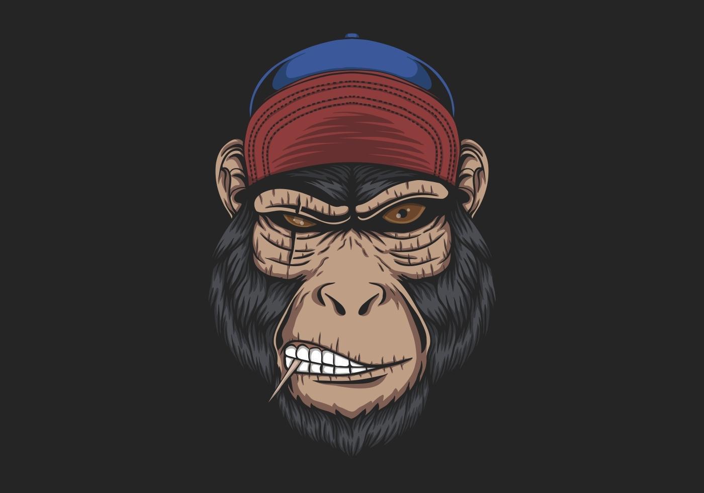 boné de cabeça de macaco vetor