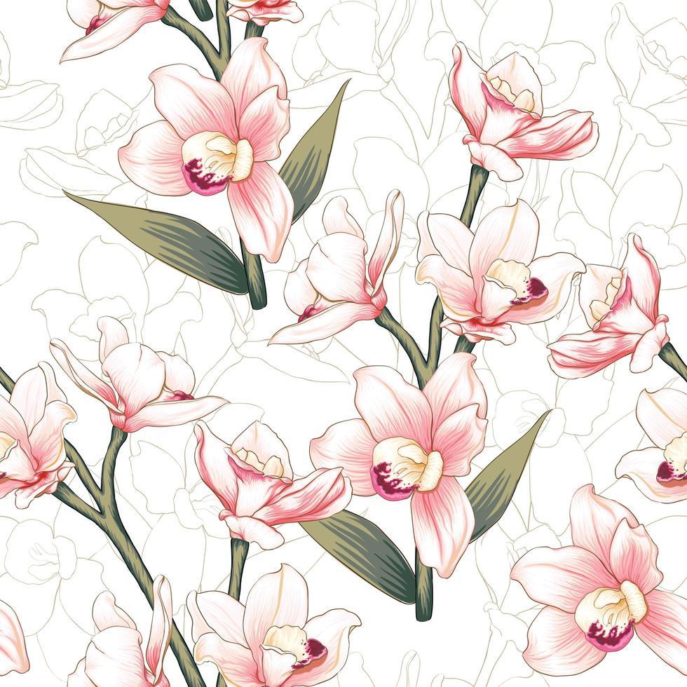 padrão de flores de orquídea rosa botânicas vetor