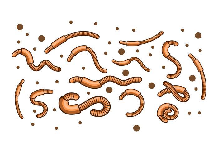 Vetor de ilustração worm livre de terra