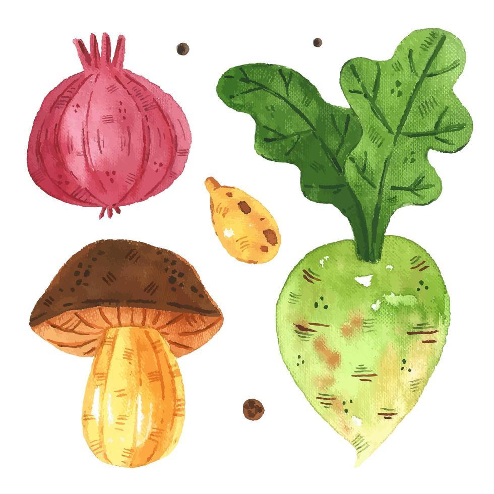 cebola em aquarela, cogumelo, rabanete, conjunto de sementes de abóbora vetor