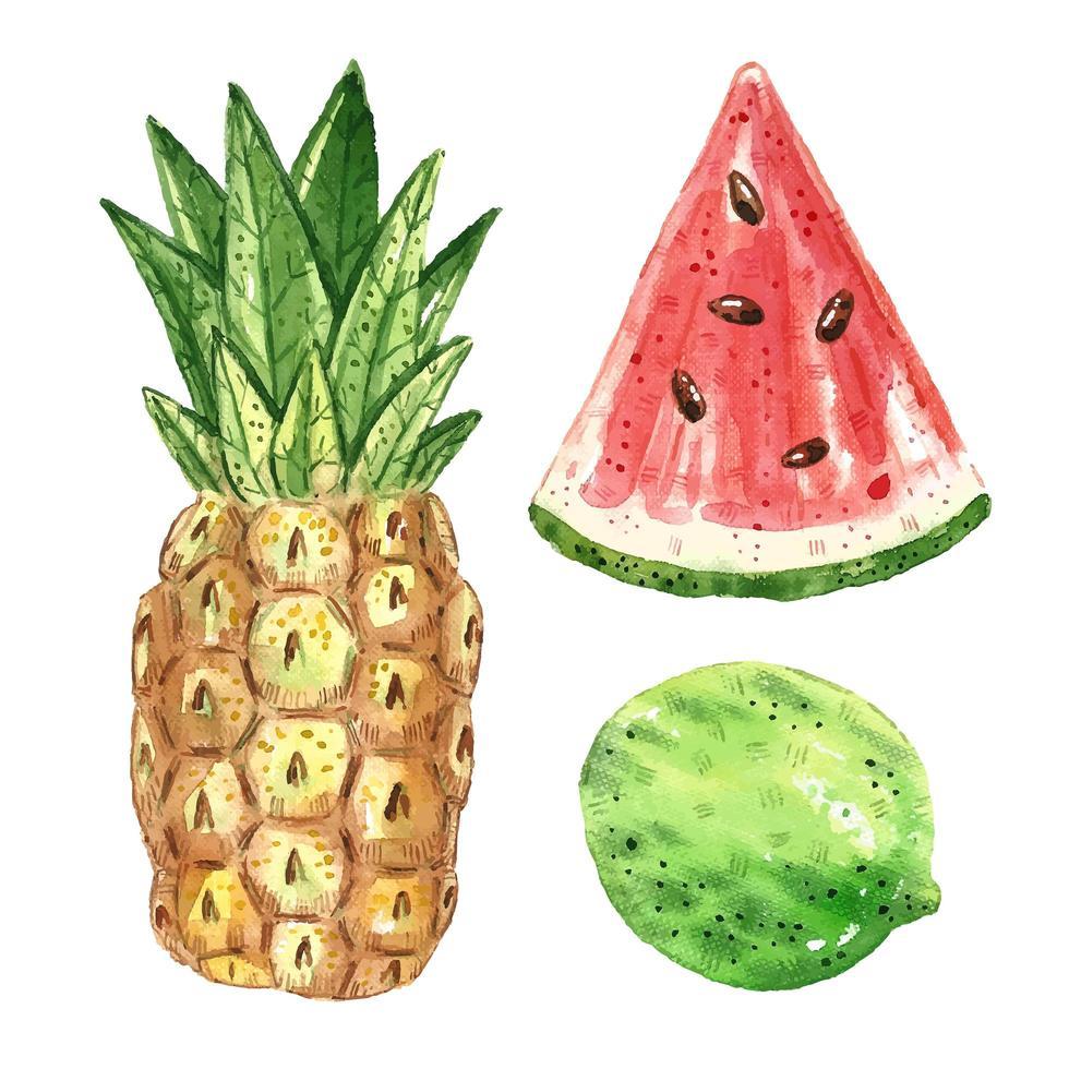 conjunto de cwatercolor de frutas tropicais vetor