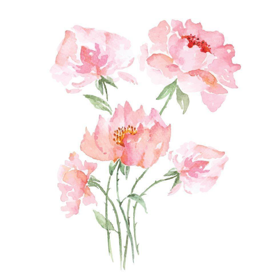 buquê de rosas pintadas com aquarelas vetor