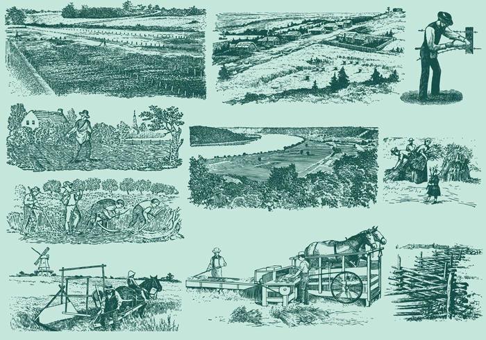 Atividades agrícolas vetor