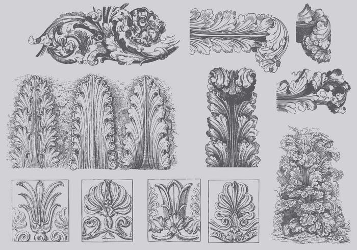 Ilustrações de Vintage Acanthus vetor