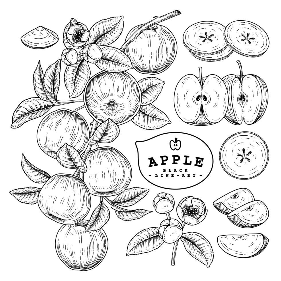 conjunto retro apple desenhado à mão vetor