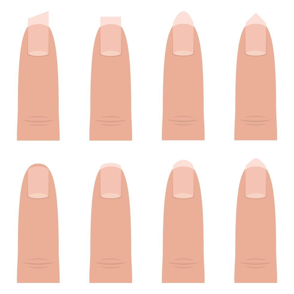 formas de unhas femininas vetor
