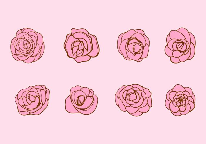 Free Hand Drawn Vector Camellia Flower