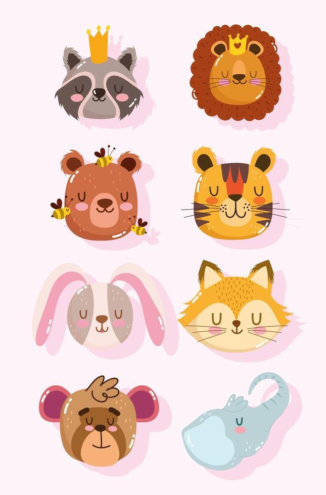 guaxinim, leão, urso, tigre, coelho, raposa e macaco vetor