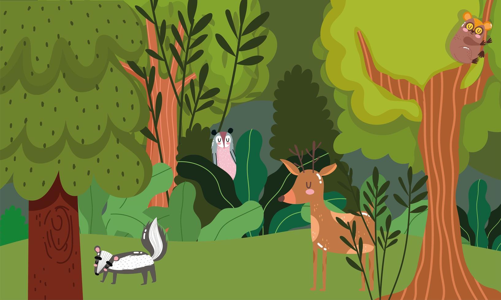 veado, gambá e gambá. animais em árvores da floresta vetor