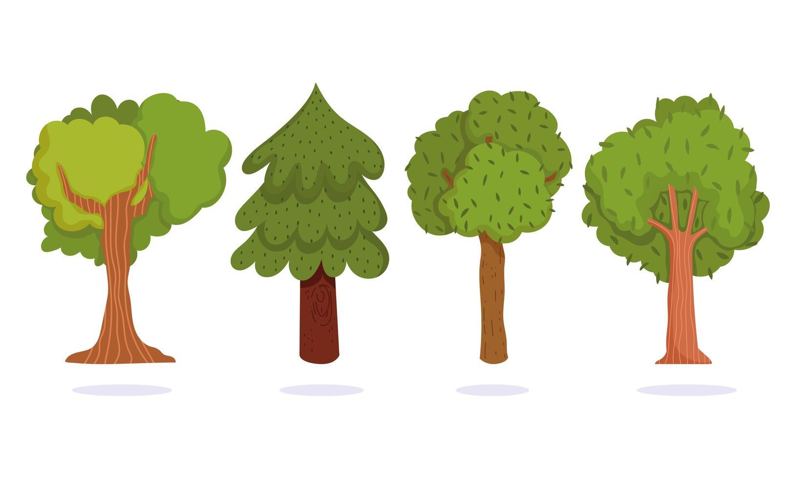 árvores verdes. floresta botânica folhagem natureza vetor
