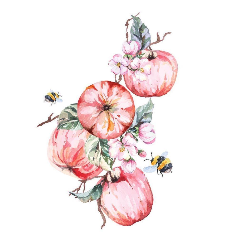 ramos de maçã pintados com aquarela vetor