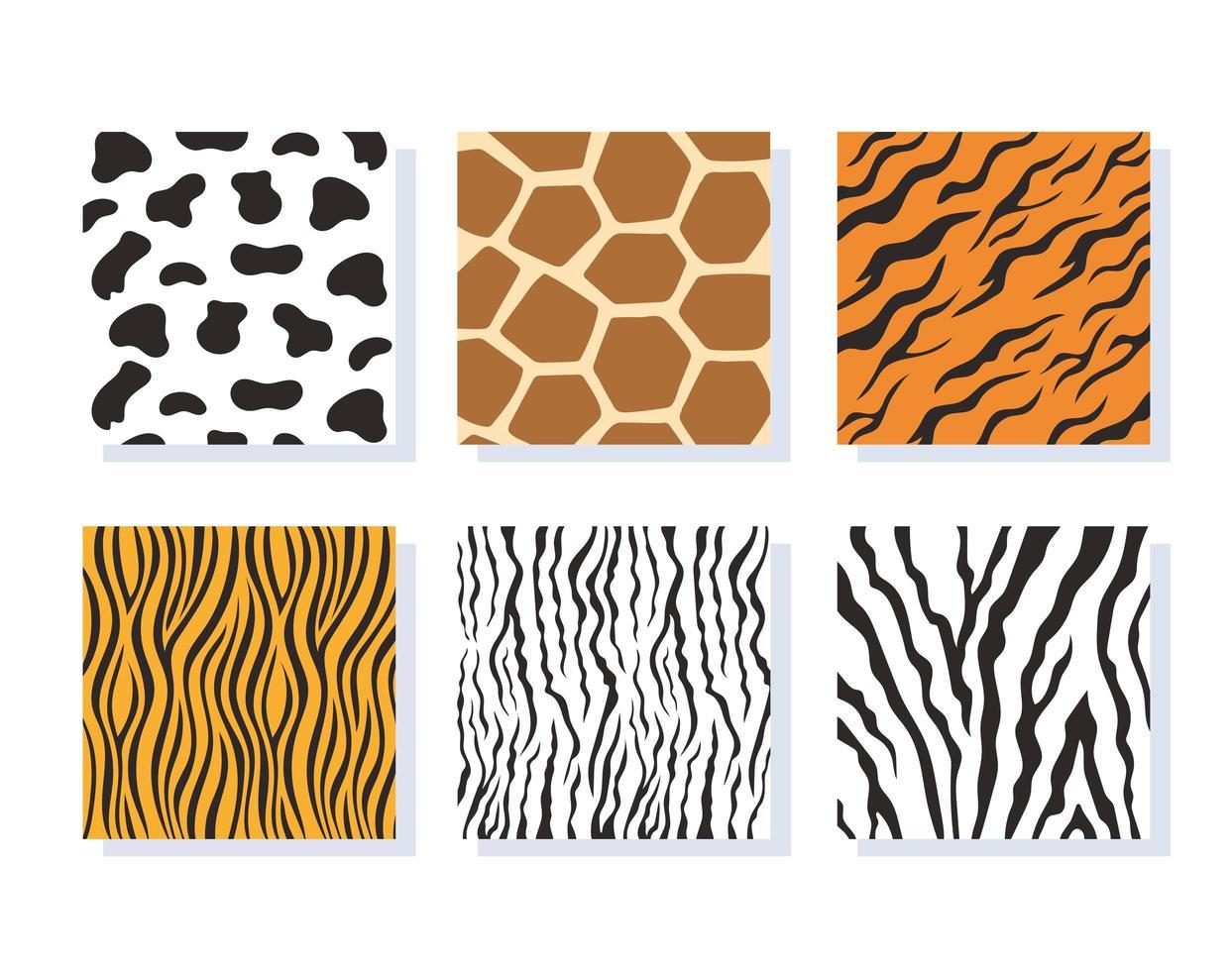 Conjunto de padrões listrados de pele de animal da selva vetor