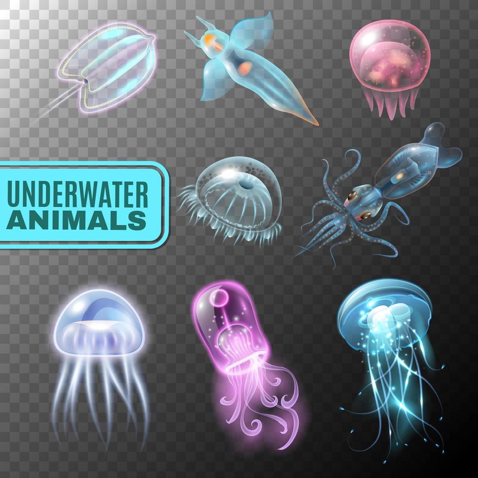 conjunto transparente subaquático vetor