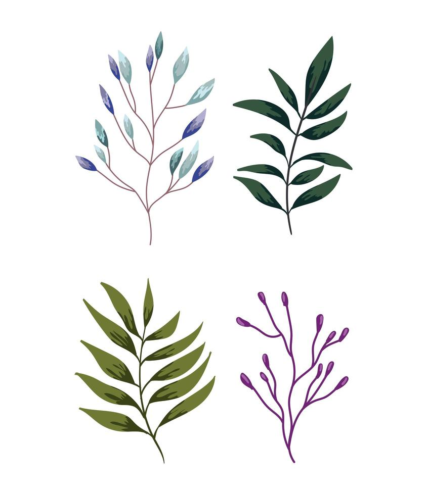 ramos, folhagem, vegetação. projeto verde da natureza vetor