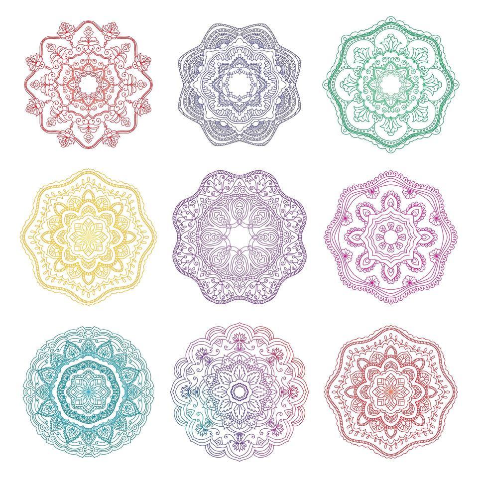 conjunto mandala redondo ornamento floral vetor