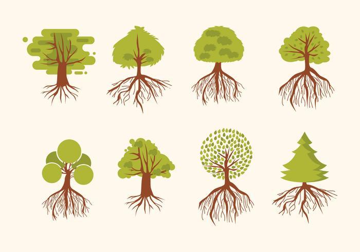 Árvore com raizes Vector