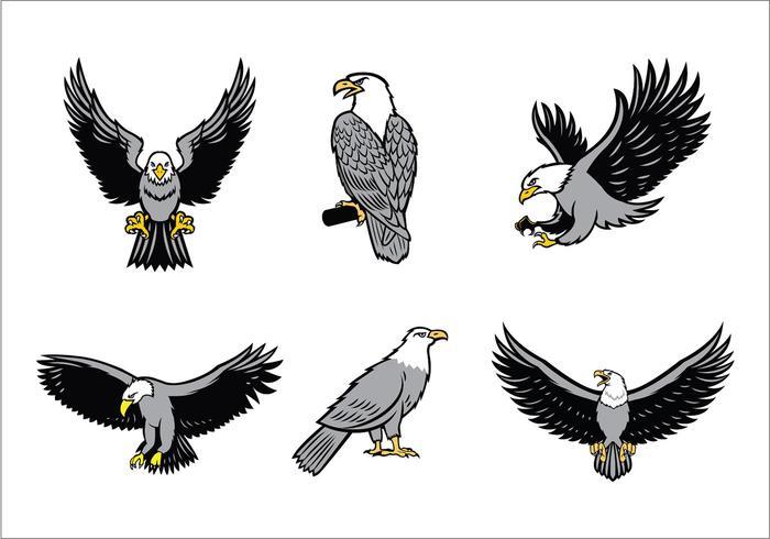 Eagles Mascote Vector Set