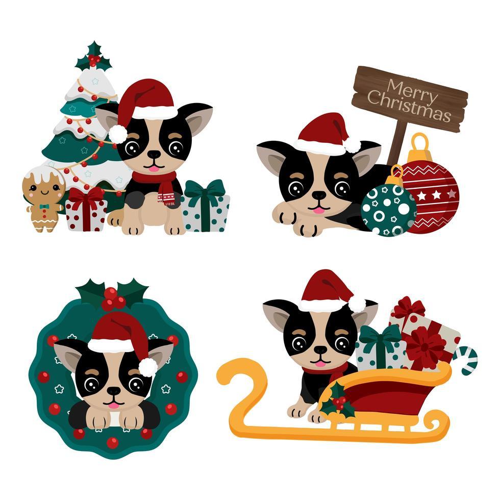 Conjunto de chihuahua fofo com chapéu de Papai Noel vetor