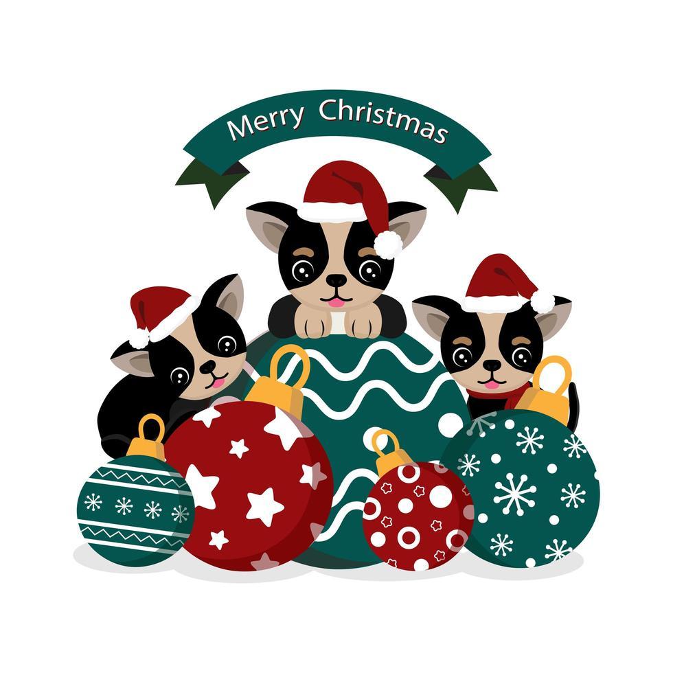 chihuahuas fofos com chapéu de Papai Noel e enfeites de natal vetor
