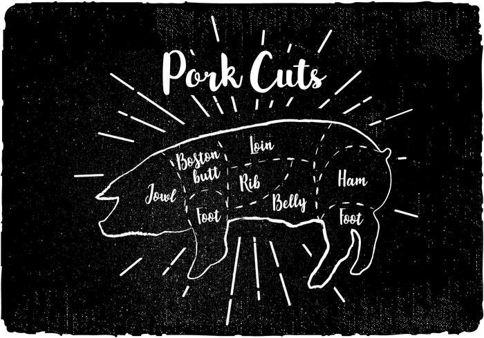 Vetor de Diagrama de Cuidados de Porco